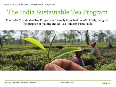 All Rights Reserved. Verde Ventures Pvt. Ltd. www.verde.co.in VERDE KNOWLEDGE INITIATIVE l PRESENTATION l V-KI/P/PE-09 The India Sustainable Tea Program.