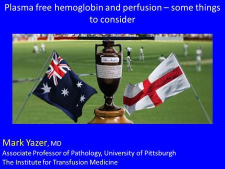 Plasma free hemoglobin and perfusion – some things to consider Mark Yazer, MD Associate Professor of Pathology, University of Pittsburgh The Institute.
