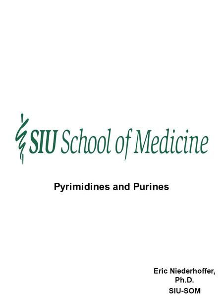 Eric Niederhoffer, Ph.D. SIU-SOM Pyrimidines and Purines.