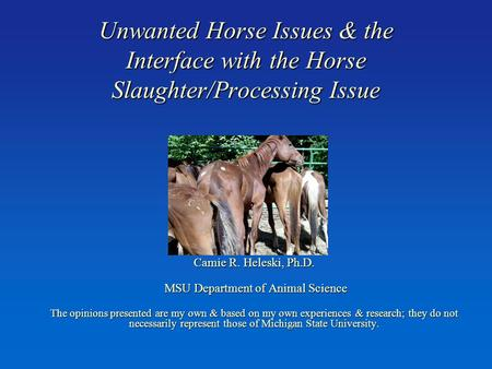 Unwanted Horse Issues & the Interface with the Horse Slaughter/Processing Issue Camie R. Heleski, Ph.D. MSU Department of Animal Science MSU Department.