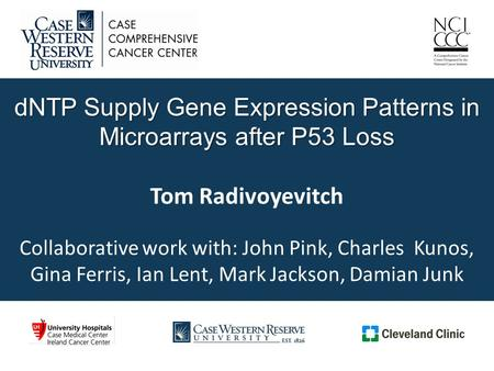 DNTP Supply Gene Expression Patterns in Microarrays after P53 Loss dNTP Supply Gene Expression Patterns in Microarrays after P53 Loss Tom Radivoyevitch.