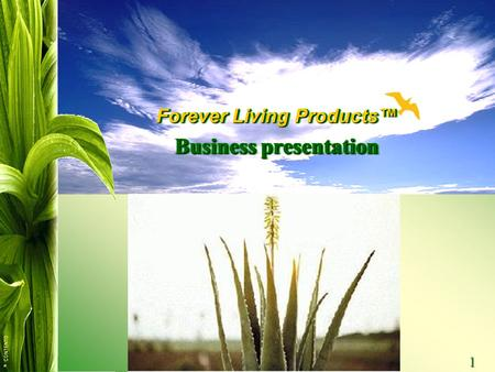 Forever Living Products™ Business presentation