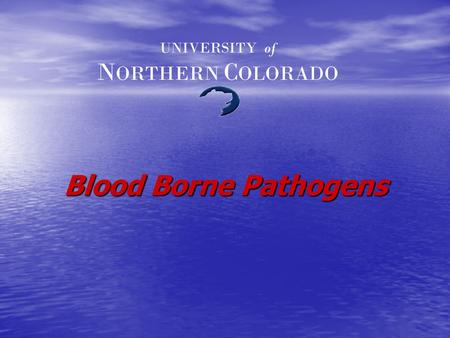 Blood Borne Pathogens UNIVERSITY of N ORTHERN C OLORADO.