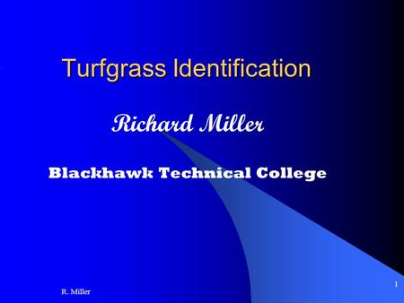 R. Miller 1 Turfgrass Identification Richard Miller Blackhawk Technical College.