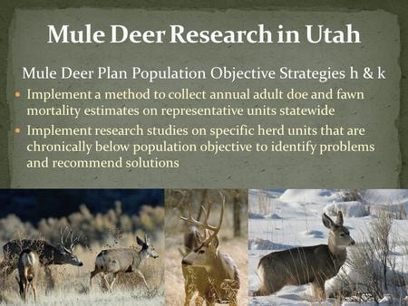 Mule Deer Plan Population Objective Strategies h & k Implement a method to collect annual adult doe and fawn mortality estimates on representative units.
