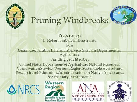 Pruning Windbreaks Prepared by: L. Robert Barber, & Ilene Iriarte For: Guam Cooperative Extension Service & Guam Department of Agriculture Funding provided.