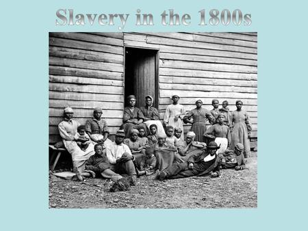 Your text here Slavery in the 1800s.
