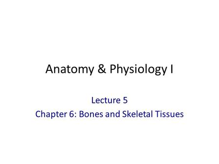 Lecture 5 Chapter 6: Bones and Skeletal Tissues
