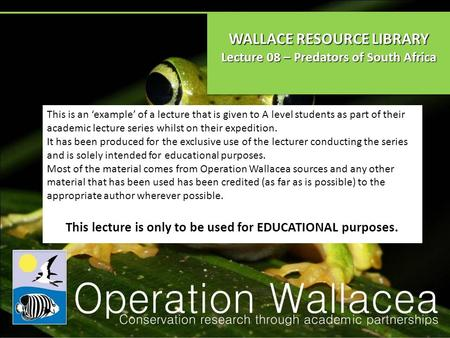 WALLACE RESOURCE LIBRARY Lecture 08 – Predators of South Africa WALLACE RESOURCE LIBRARY Lecture 08 – Predators of South Africa This is an 'example' of.