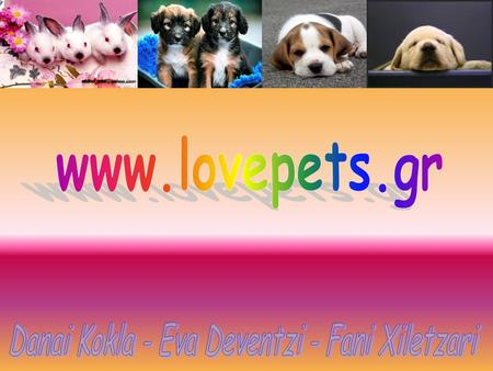 Our site This site is created to help you take a good care of your pets and learn the characteristics and their habits. We also provide a pansion for.