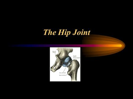 The Hip Joint. MOVEMENT Flexion Extension Abduction Adduction Internal Rotation External Rotation.