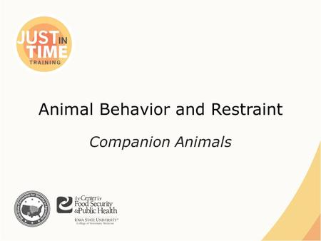 Animal Behavior and Restraint Companion Animals. ●Domesticated species – Dogs, cats, rabbits, rodents, birds ●Exotic pet species – Reptiles, amphibians,