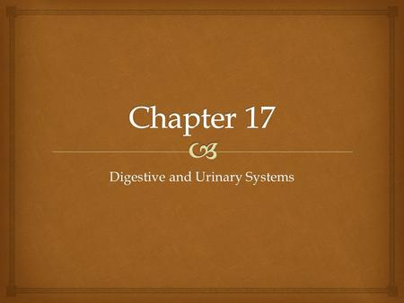 Digestive and Urinary Systems
