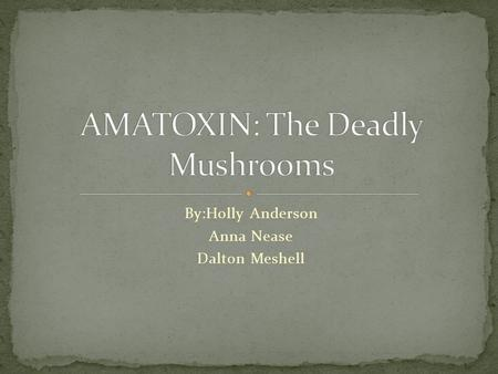 By:Holly Anderson Anna Nease Dalton Meshell. Of more than 5000 species of mushrooms in the United States, approximately 100 are poisonous, and less than.