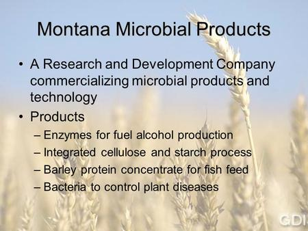Montana Microbial Products A Research and Development Company commercializing microbial products and technology Products –Enzymes for fuel alcohol production.