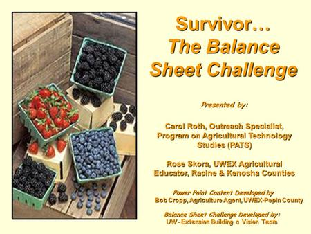 Survivor… The Balance Sheet Challenge Presented by: Carol Roth, Outreach Specialist, Program on Agricultural Technology Studies (PATS) Rose Skora, UWEX.