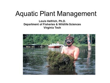 Aquatic Plant Management Louis Helfrich, Ph.D. Department of Fisheries & Wildlife Sciences Virginia Tech.