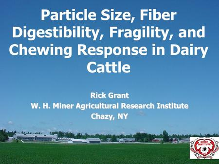 Particle Size, Fiber Digestibility, Fragility, and Chewing Response in Dairy Cattle Rick Grant W. H. Miner Agricultural Research Institute Chazy, NY.