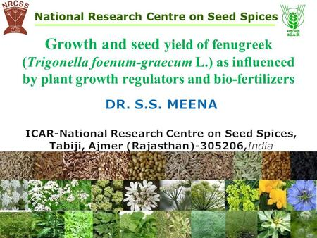 National Research Centre on Seed Spices Growth and seed yield of fenugreek (Trigonella foenum-graecum L.) as influenced by plant growth regulators and.