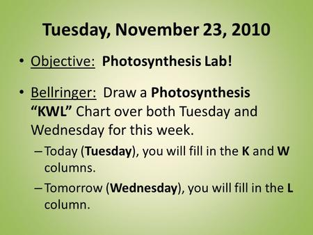 Tuesday, November 23, 2010 Objective: Photosynthesis Lab!