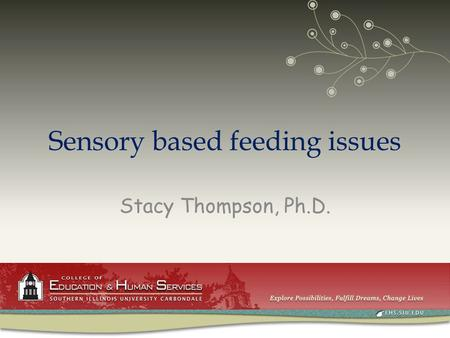 Sensory based feeding issues