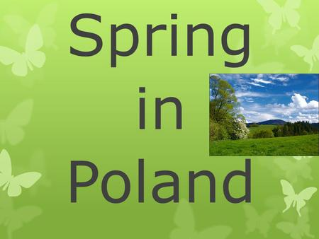 Spring in Poland. Spring  Spring is one of the four basic season in nature. The world of plants and animals wakes up and the new life begins.  Astronomical.