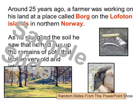 Around 25 years ago, a farmer was working on his land at a place called Borg on the Lofoton islands in northern Norway. As he ploughed the soil he saw.