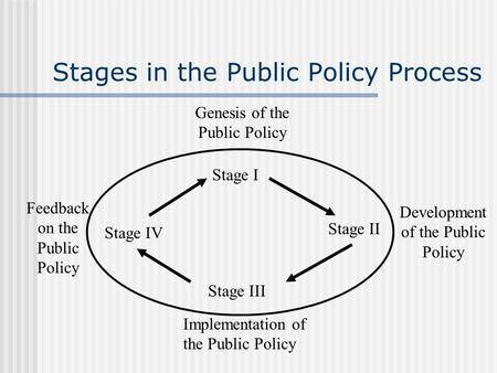 Stages in the Public Policy Process