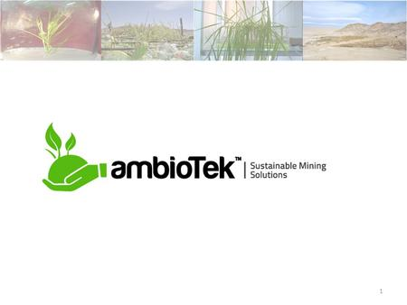 1. About us Ambiotek SpA, is a spin off from Universidad de Santiago de Chile, that develops and offers environmental solutions for the mining industry.