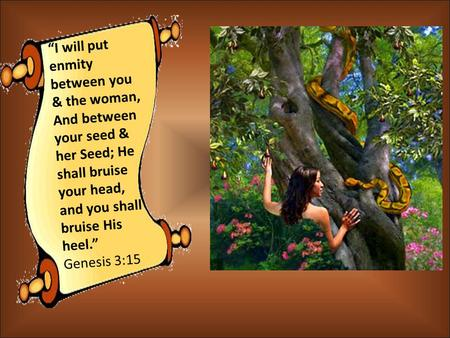 """I will put enmity between you & the woman, And between your seed & her Seed; He shall bruise your head, and you shall bruise His heel."" Genesis 3:15."