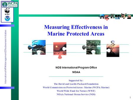 International MPA Management Effectiveness Initiative 1 Measuring Effectiveness in Marine Protected Areas Supported by: The David and Lucille Packard Foundation.