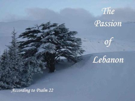The Passion ofLebanon According to Psalm 22 My God, my God, why hast thou forsaken me? why hast thou forsaken me?