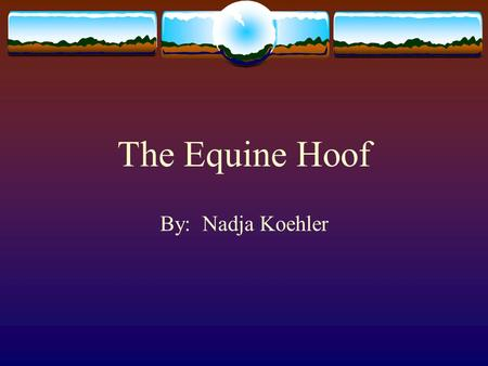 The Equine Hoof By: Nadja Koehler.