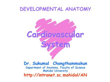DEVELOPMENTAL ANATOMY Cardiovascular System Dr. Sukumal Chongthammakun Department of Anatomy, Faculty of Science Mahidol University