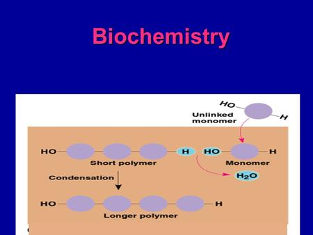 Biochemistry. Macromolecules (large molecules):  Carbohydrates  Lipids  Proteins  Nucleic Acids These are Polymers ( many parts) constructed of Monomers.