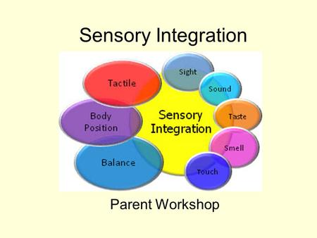 Sensory Integration Parent Workshop. The 5 senses The commonly known senses – These keep us informed about what is happening outside our body.