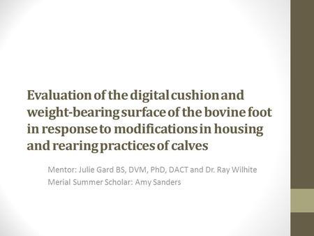Evaluation of the digital cushion and weight-bearing surface of the bovine foot in response to modifications in housing and rearing practices of calves.
