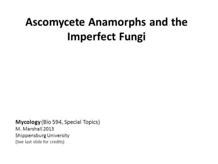 Ascomycete Anamorphs and the Imperfect Fungi