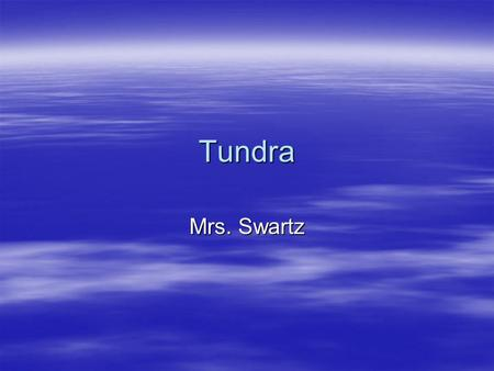 Tundra Mrs. Swartz. Animals That Live In The Tundra.