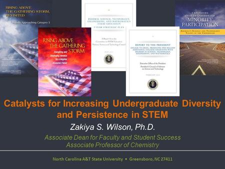 Catalysts for Increasing Undergraduate Diversity and Persistence in STEM Office of Strategic Initiatives Zakiya S. Wilson, Ph.D. Associate Dean for Faculty.