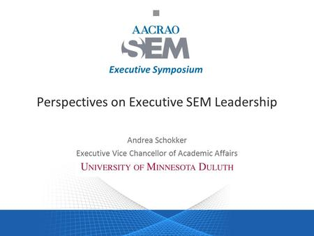 Executive Symposium Perspectives on Executive SEM Leadership Andrea Schokker Executive Vice Chancellor of Academic Affairs.