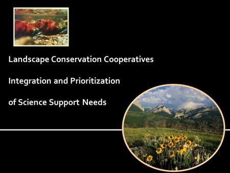 Landscape Conservation Cooperatives Integration and Prioritization of Science Support Needs.