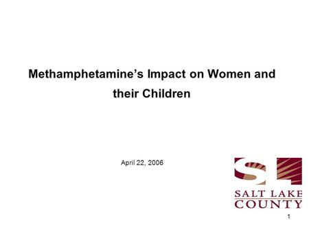1 Methamphetamine's Impact on Women and their Children April 22, 2006.