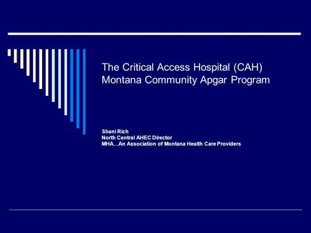 The Critical Access Hospital (CAH) Montana Community Apgar Program Shani Rich North Central AHEC Director MHA…An Association of Montana Health Care Providers.