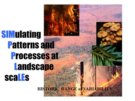 SIMulating Patterns and Processes at Landscape scaLEs HISTORIC RANGE of VARIABILITY.