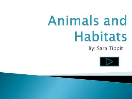 By: Sara Tippit.  Content Area: Science  Grade Level: 2 nd Grade  Summary: The purpose of the PowerPoint is for students to learn that animals live.