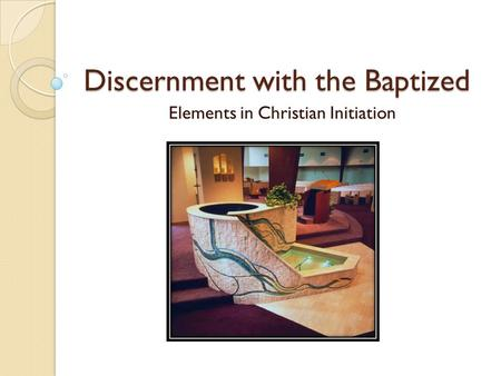 Discernment with the Baptized Elements in Christian Initiation.