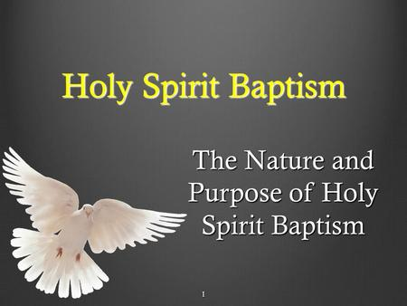 1 Holy Spirit Baptism The Nature and Purpose of Holy Spirit Baptism 1.