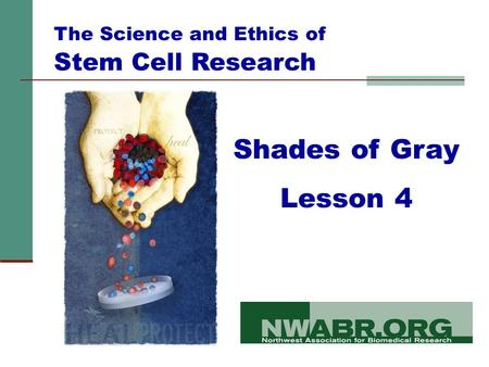 Shades of Gray Lesson 4 The Science and Ethics of Stem Cell Research.