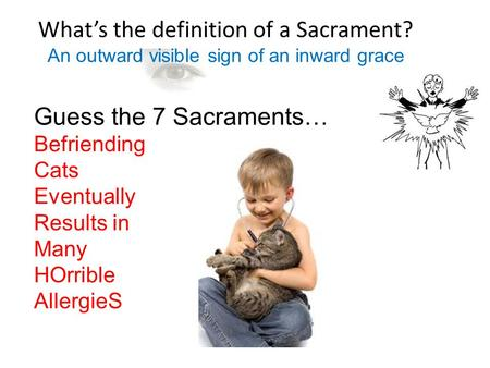 What's the definition of a Sacrament? Guess the 7 Sacraments… Befriending Cats Eventually Results in Many HOrrible AllergieS An outward visible sign of.